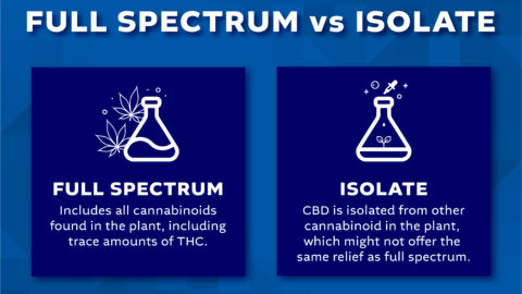 Full Spectrum Hemp Extract vs CBD Isolate
